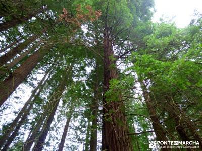 Ruta del Cares - Garganta Divina - Parque Nacional de los Picos de Europa; conocer gente